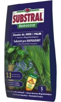 Substral Osmocote ziemia do jukk i palm
